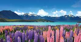 Best time Visit New Zealand