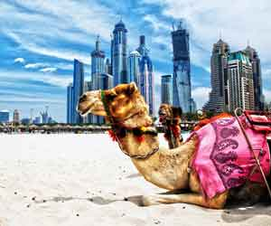 Holidays in Dubai (4N/5D)