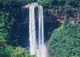 The Tamarind Falls